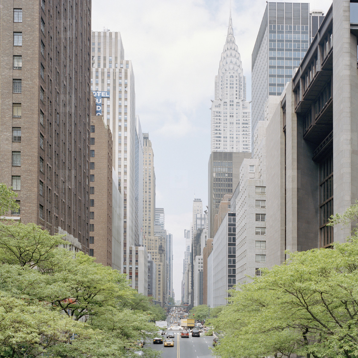 NYC Plus  14