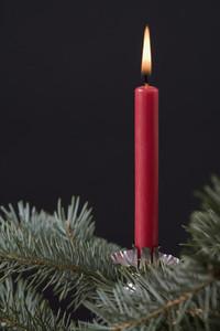 Christmas Stills  01