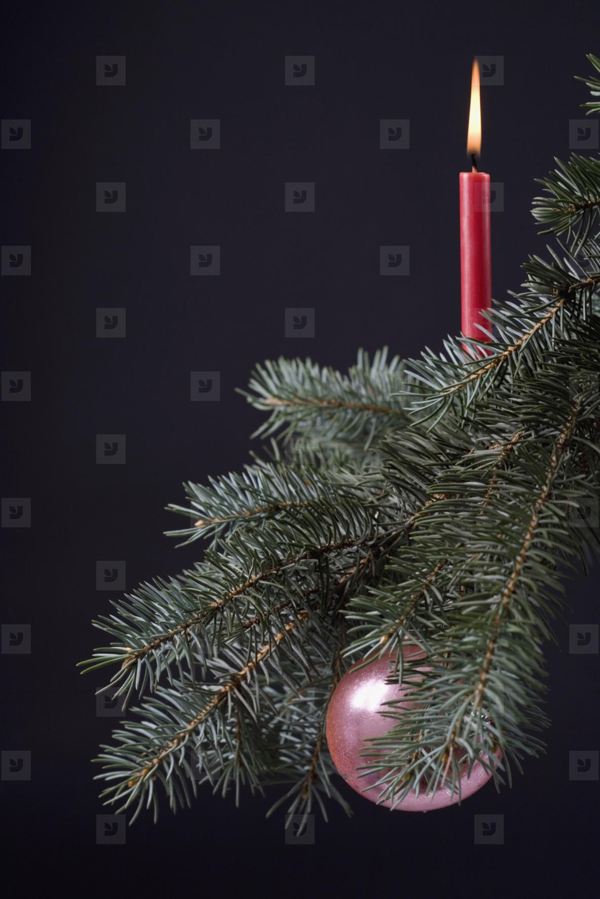 Christmas Stills  06