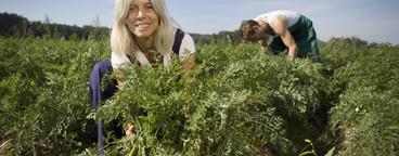 Organic Farming  07