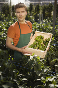 Organic Farming  12