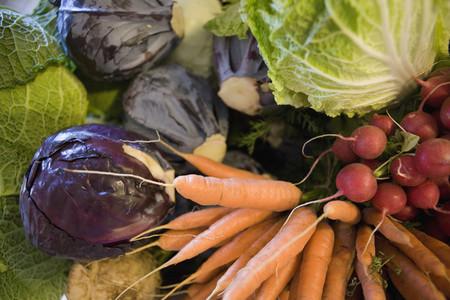 Organic Farming  33