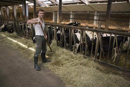 Organic Farming 43