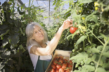 Organic Farming  46