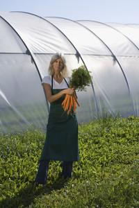 Organic Farming 50