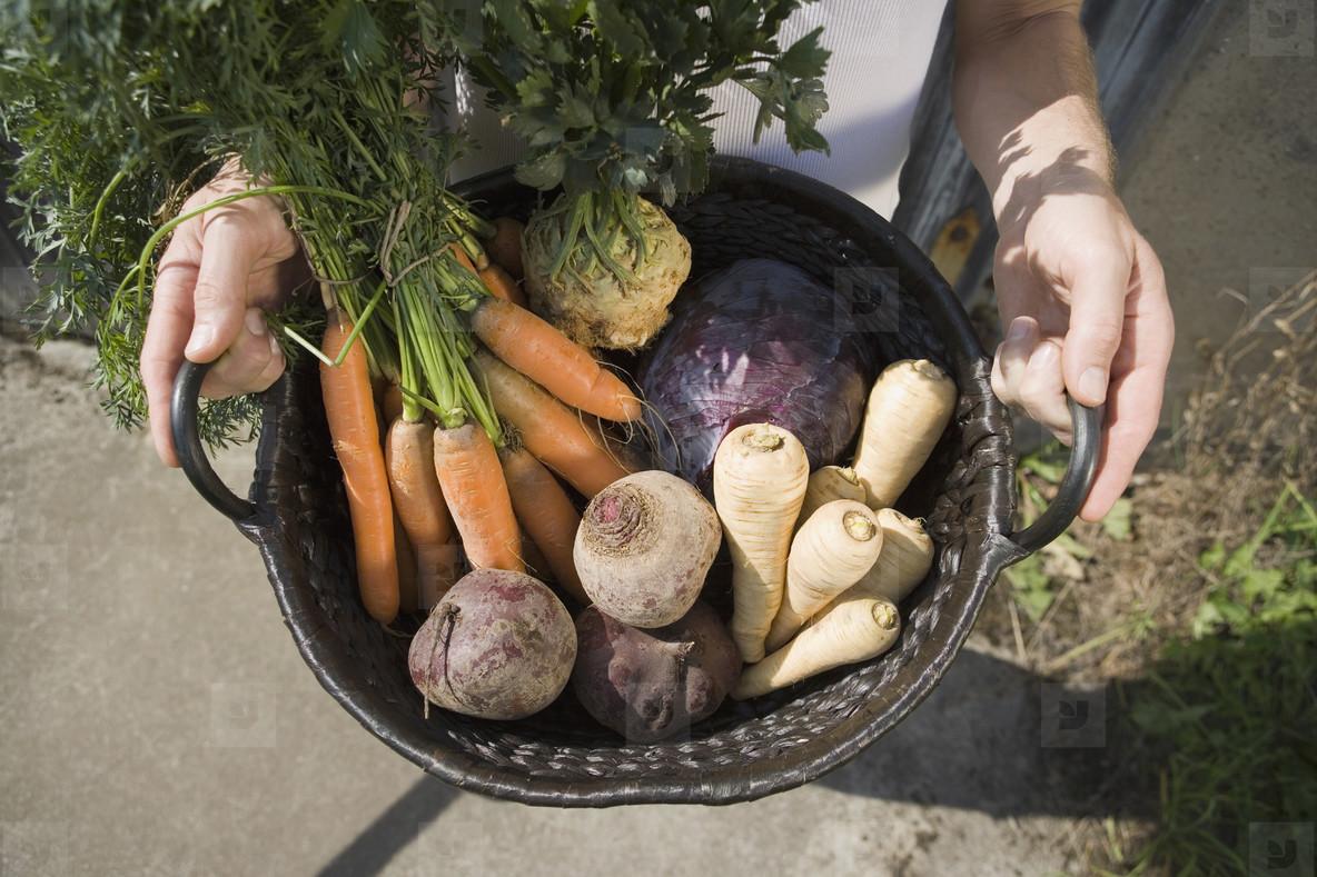 Organic Farming  57