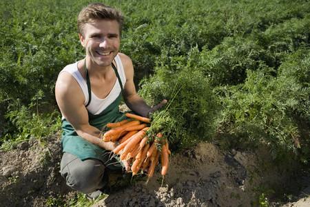 Organic Farming  60