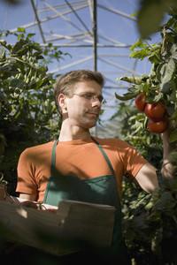 Organic Farming 67