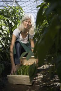 Organic Farming 68