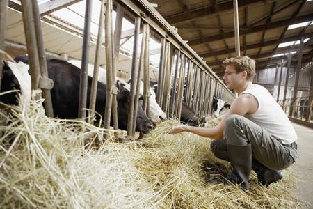 Organic Farming 71