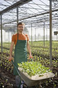 Organic Farming 84