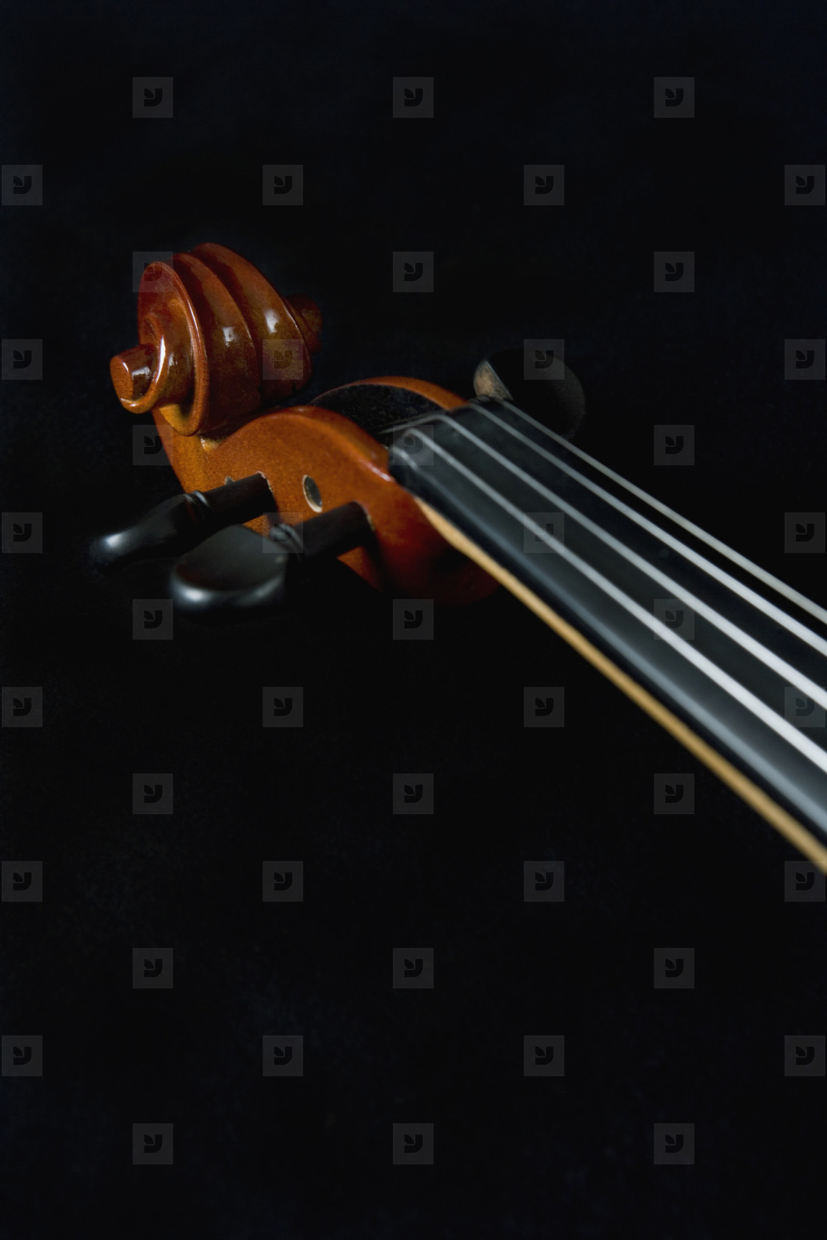 Classical Instruments  05