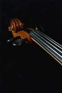 Classical Instruments 05