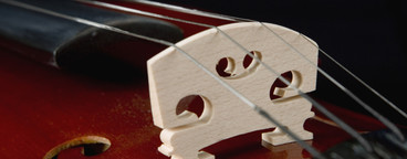 Classical Instruments  32