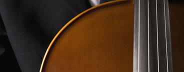 Classical Instruments  41
