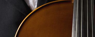 Classical Instruments  44