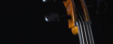 Classical Instruments  48