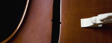 Classical Instruments  52