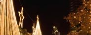 German Christmas Market  29