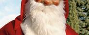 Christmas Glimpses  10