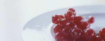 Minimal Foods  04