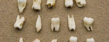 Dental Stills  02