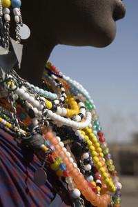 African Safari Scenes 101 04