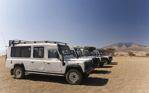 African Safari Scenes 101 27
