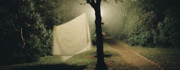 Night Blanks  07