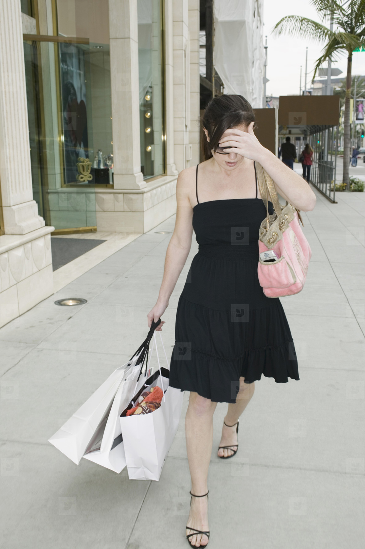 Beverly Hills Shopping Spree  08