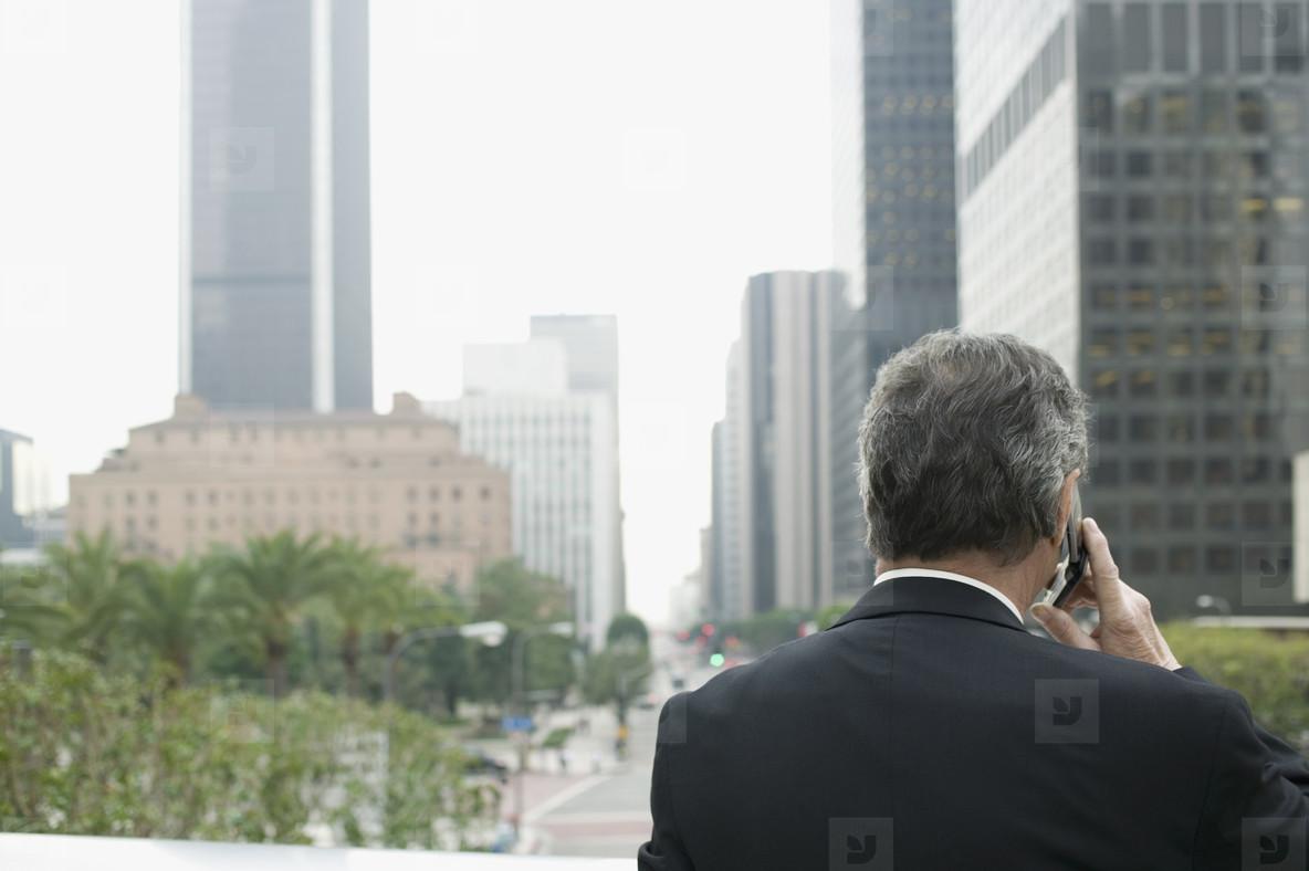 Senior Business Executive  39