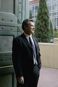 Senior Business Executive  43