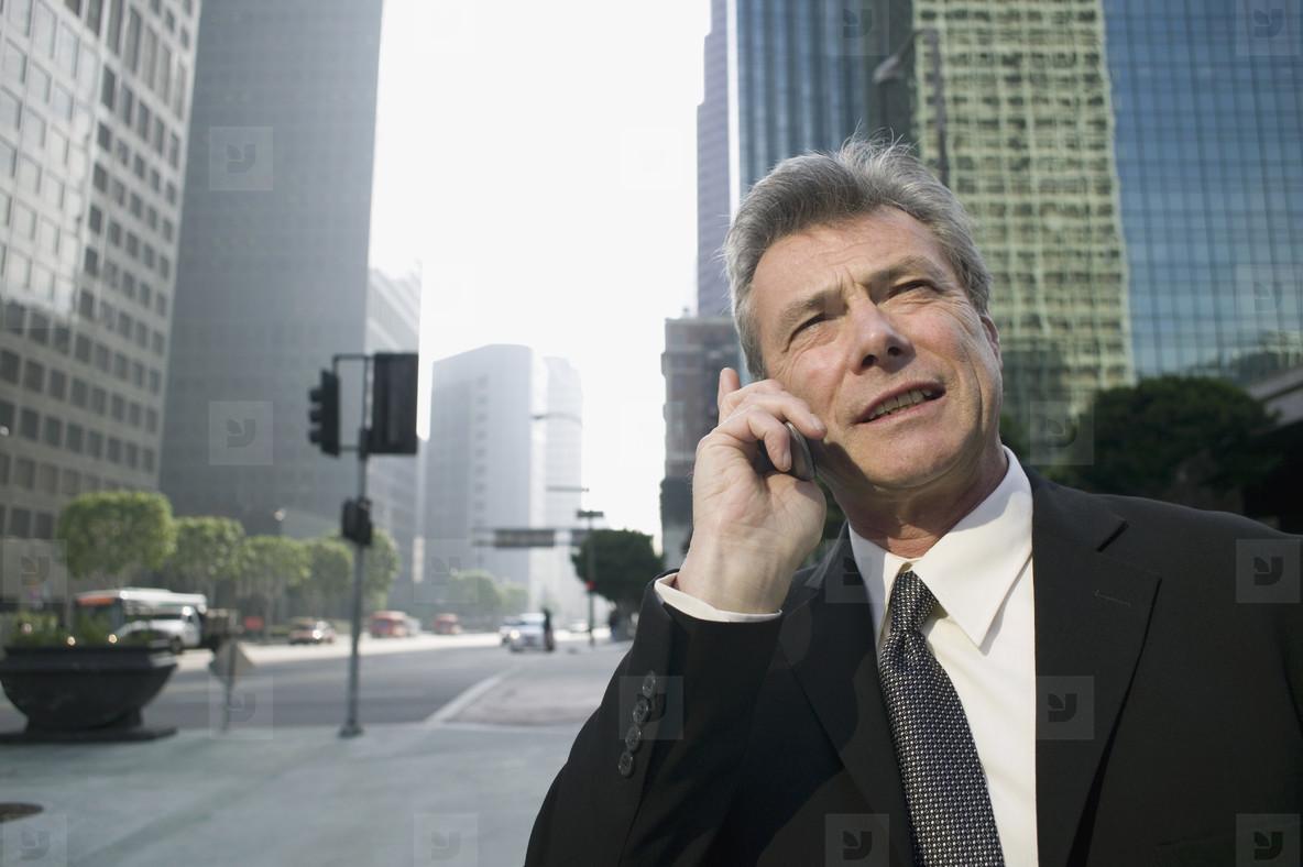 Senior Business Executive  45