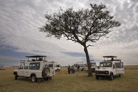 African Safari Scenes 102 28