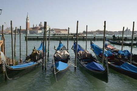 Venice Bliss  09