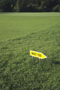 Golf and Stills 06