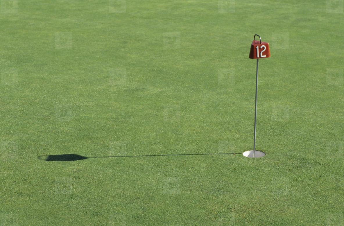 Golf and Stills  08