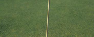 Golf and Stills  10