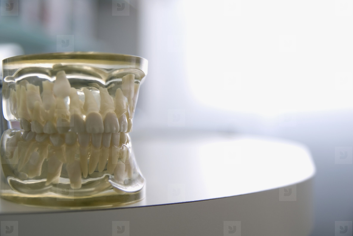 Dental Devices  02