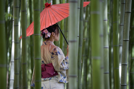 Japanese Kimonos 01