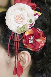 Japanese Kimonos 04
