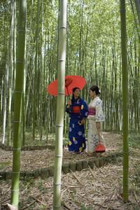 Japanese Kimonos  10