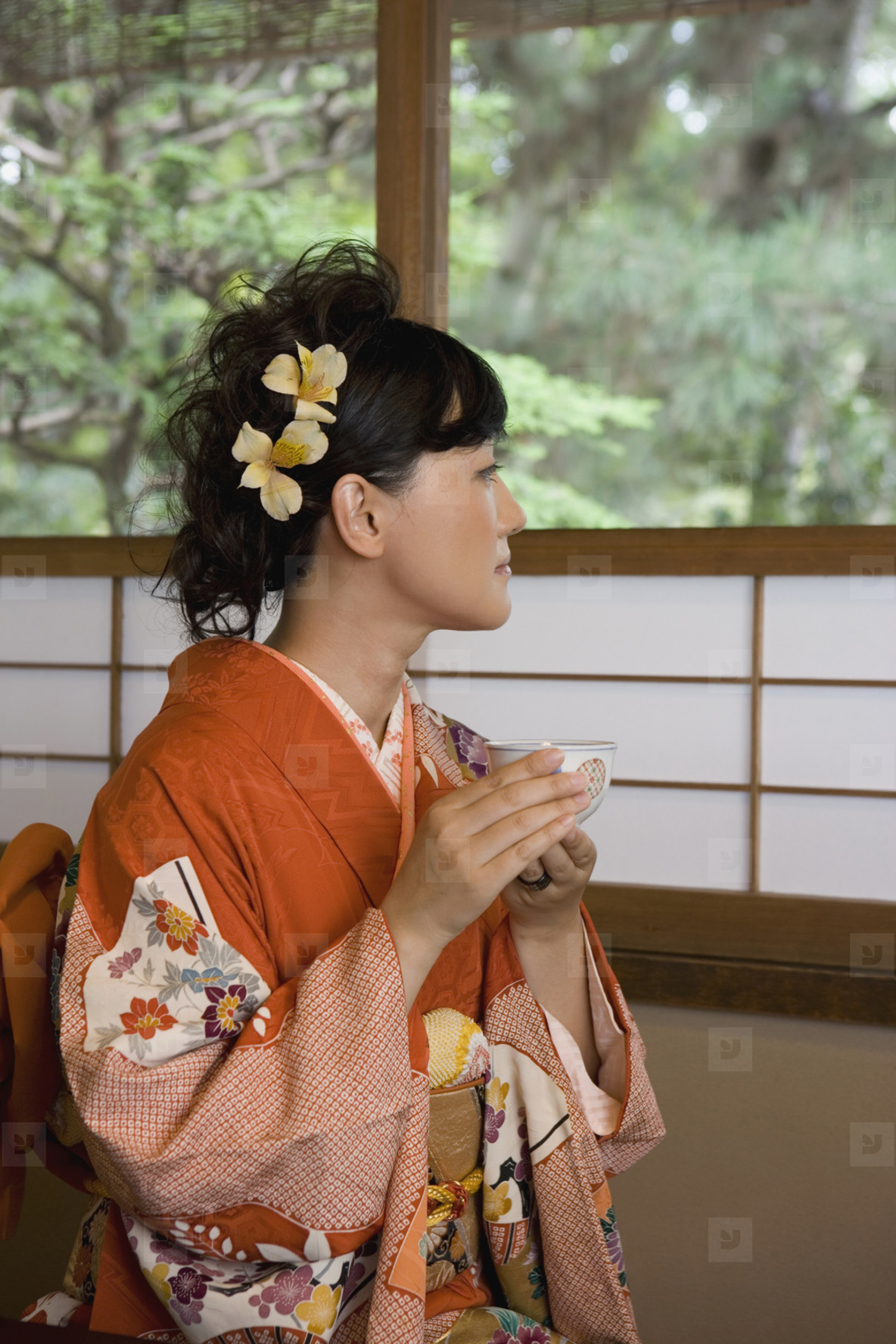 Japanese Kimonos  19
