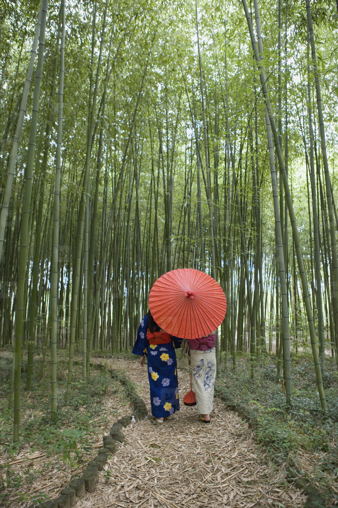 Japanese Kimonos  31
