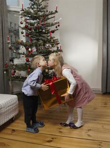 Happy Home Holidays 17