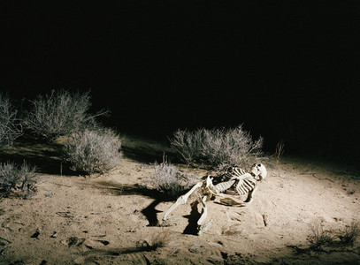 Just Deserts 05