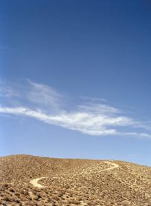 Just Deserts 06