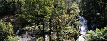 Australian Scenery  14