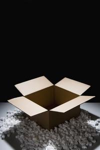 Puzzled 41