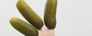 Pickled  27